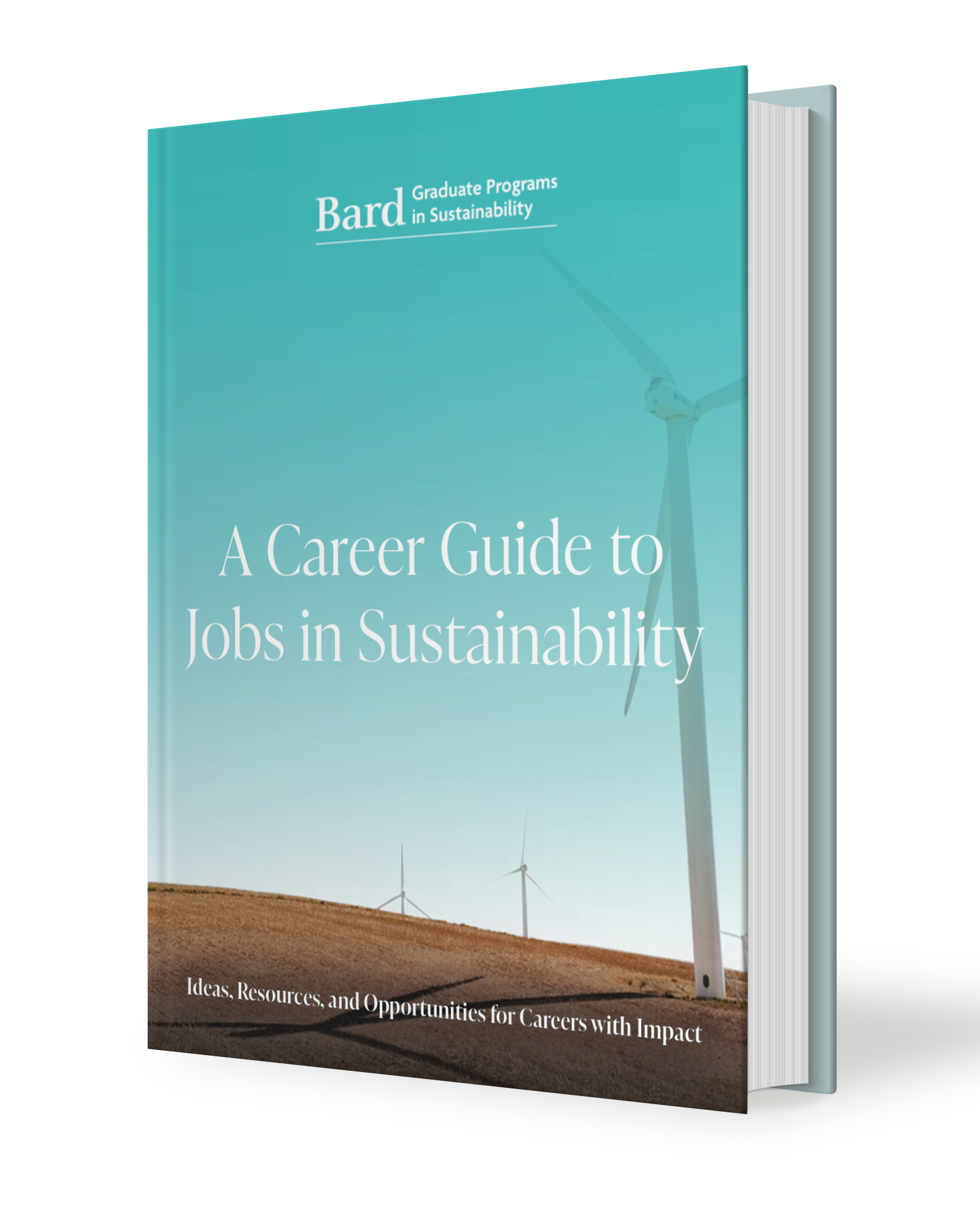 A Career Guide to Jobs in Sustainability