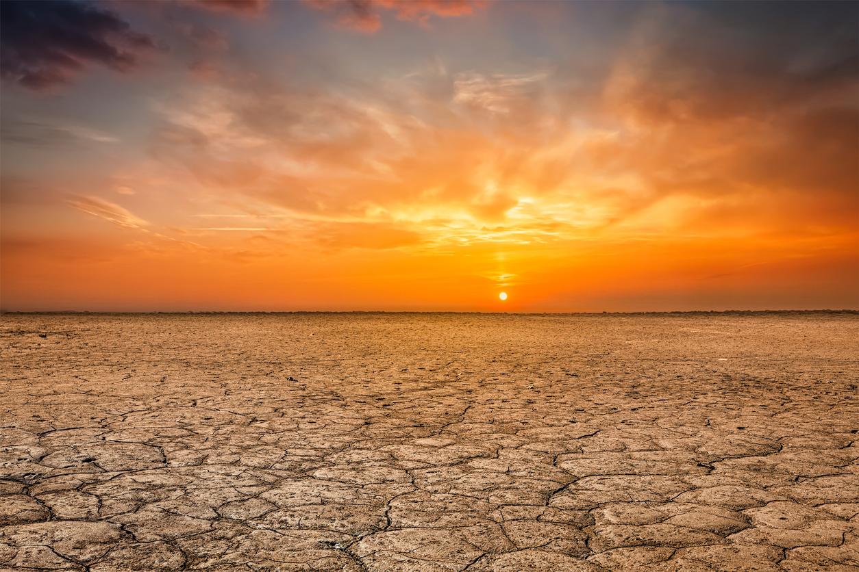 barren-earth