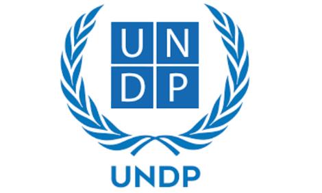 UNDP logo - edited